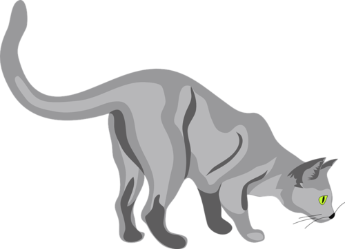 British shorthair cartoon