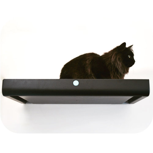 cat relaxing on a wall-mounted platform