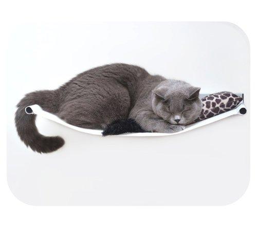 cat sleeping on a hammock