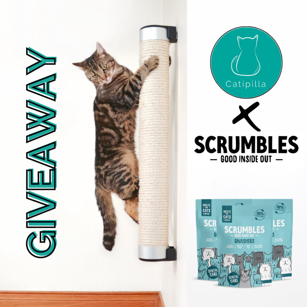 Scrumbles X Catipilla Giveaway prize pack
